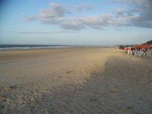 Praia do Caolho - Vue 11175 fois, 6896 votes